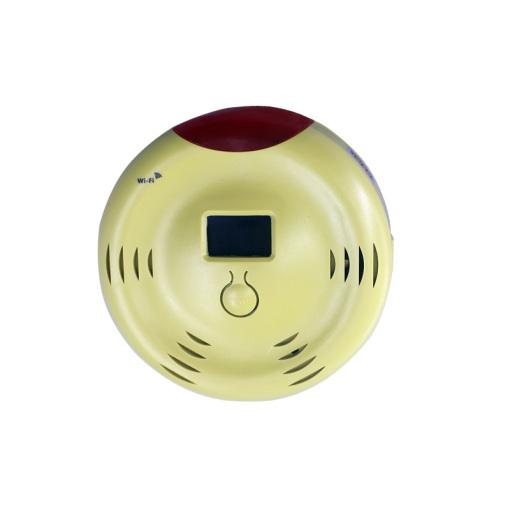 Combustible GAS Detector/Alarm