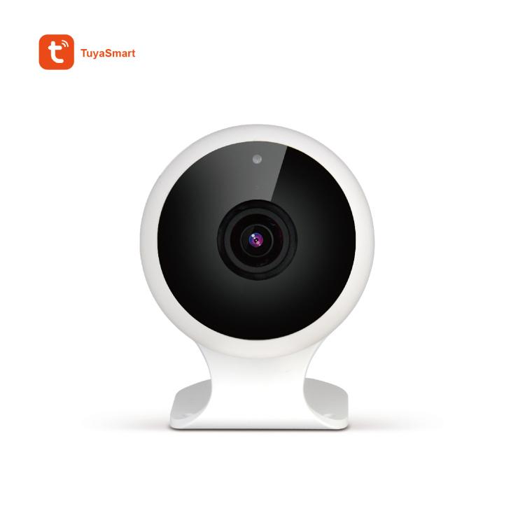 1080P Indoor Wi-Fi IP Camera with Fish-Eye