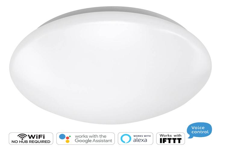 WIFI RGBCW Ceiling Light