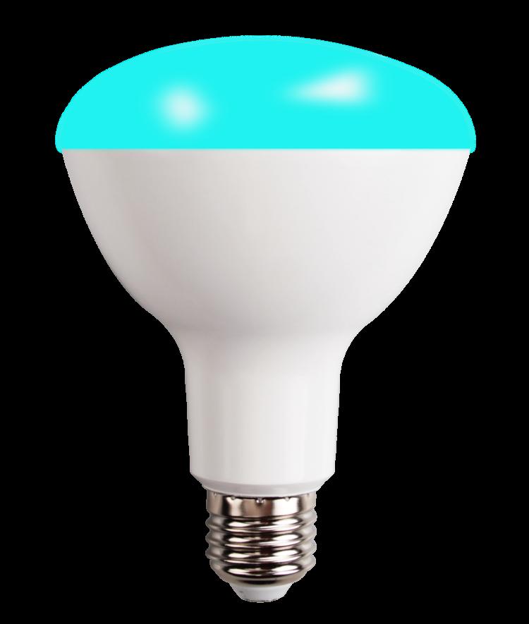 Bluetooth Mesh RGBCW Bulb