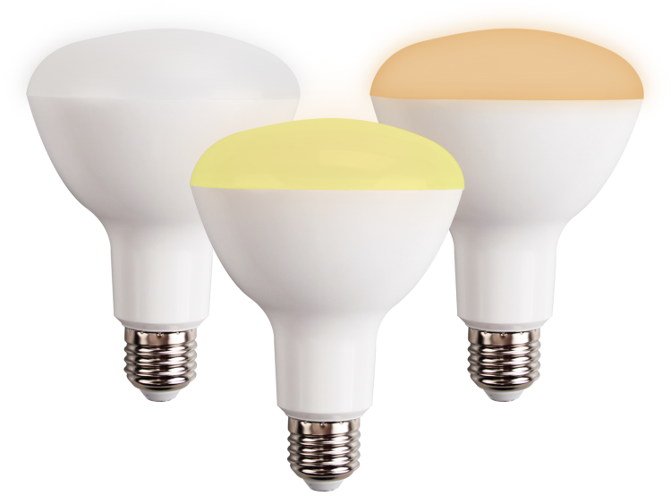 BR30 Sigmesh dimmable bulb