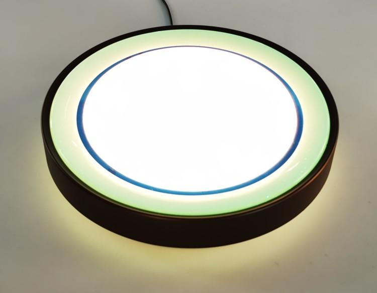 LED Smart Ceiling Lamp