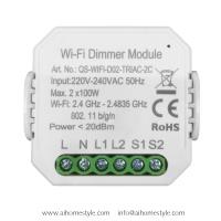 2 Gangs Smart Dimmer Switch Module