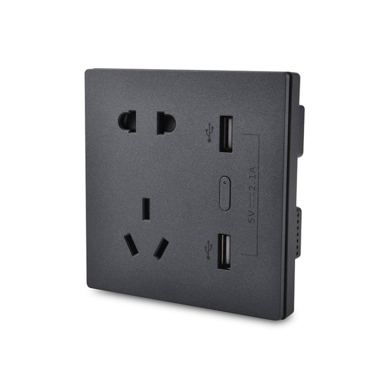 250V 10A Smart Zigbee Wall Socket With USB Charging Ports