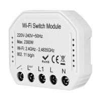 1 Gang Wifi Switch Module