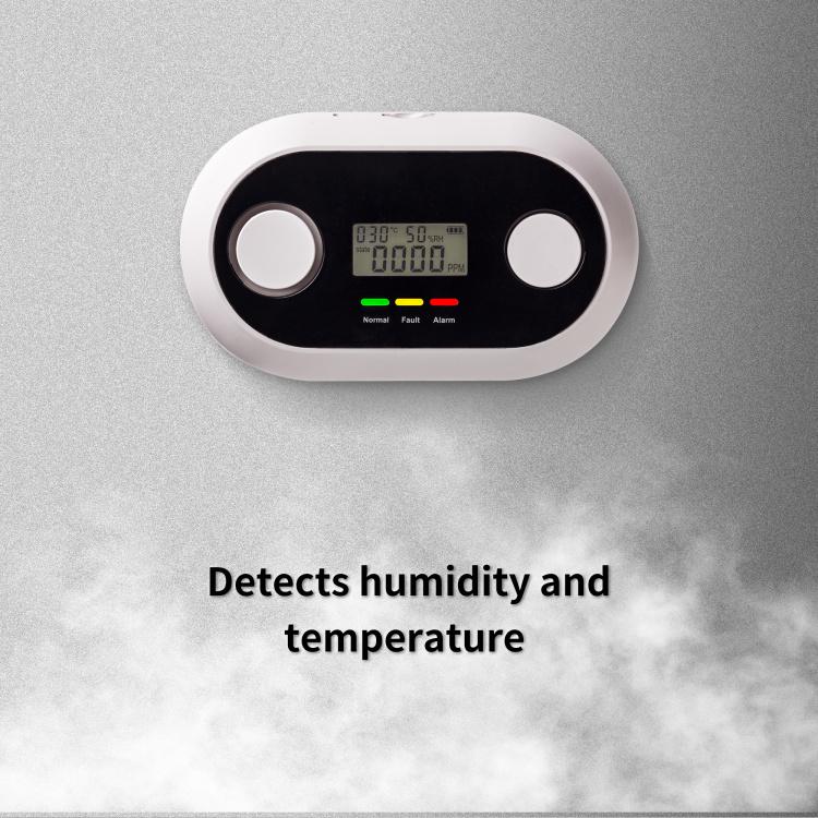 10 Years Wi-Fi Smart Carbon Monoxide Detector-CO1 Detector