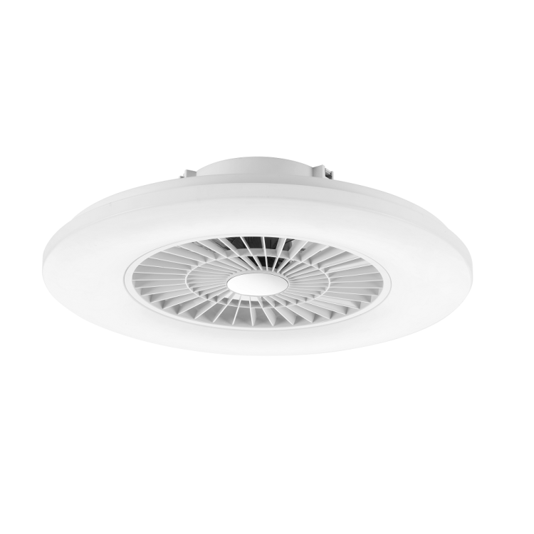 Ceiling Fan Light with Starlight Cover