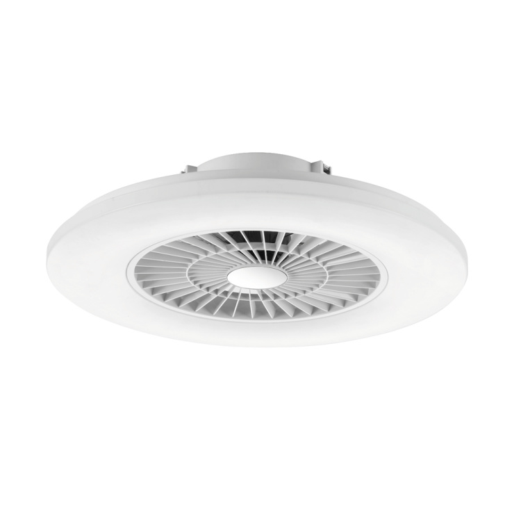 Ceiling Fan Light with Opal White Cover