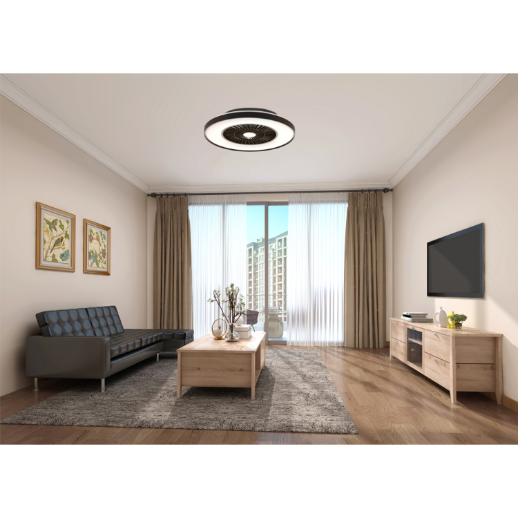 Ceiling Fan Light With Black Painting Frame