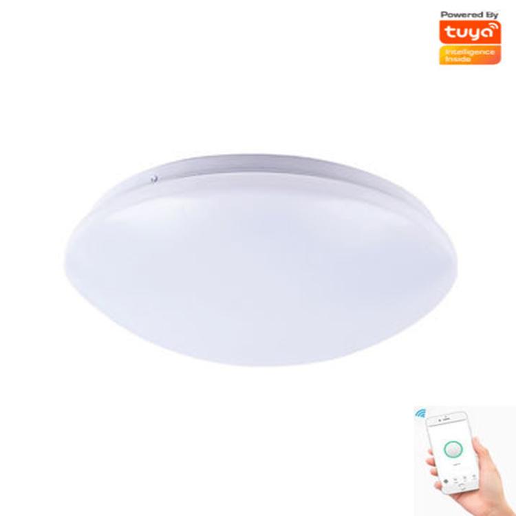 WIFI RGB+ CCT 12W Adjustable Lamp Mobile APP Ceiling Light,Tuya