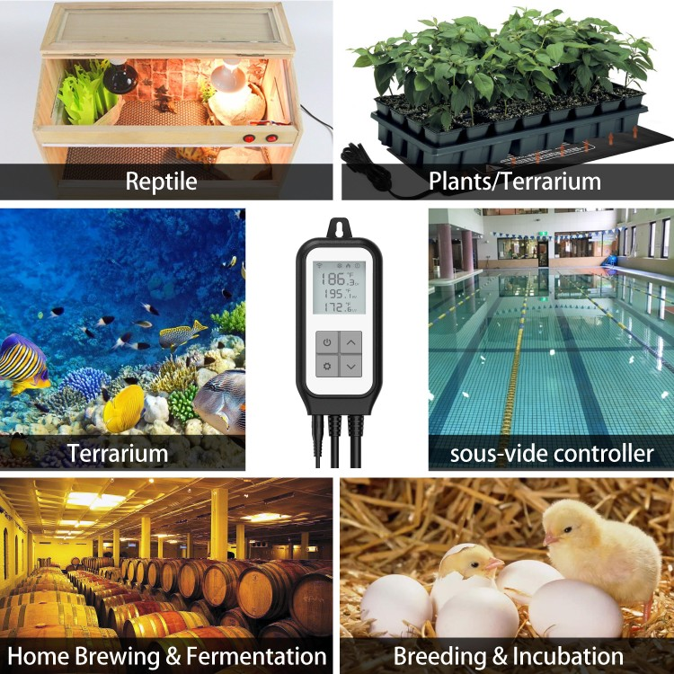 Smart Digital Temperature Controller Plug