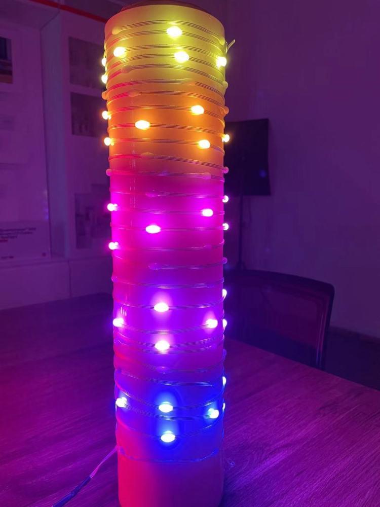 Smart Rgbic Led Fairy String Lights Work with Alexa Google Home Custom Lighting Display Music Sync Hanging Twinkle Light