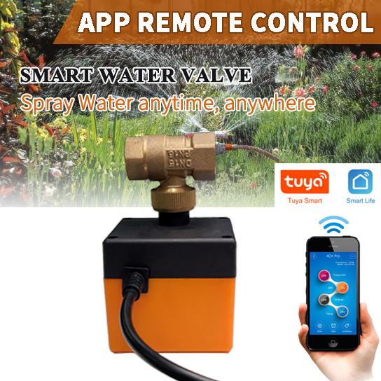 Intelligent WIFI remote control water vapor valve switch