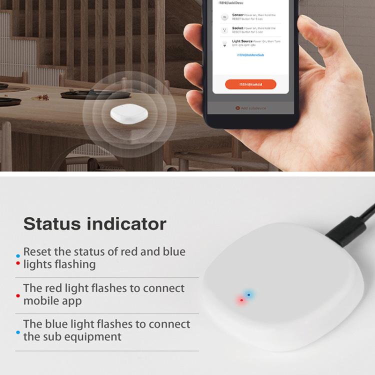 Smart Safety Sensor Zigbee Bluetooth Gateway DC5V 1A