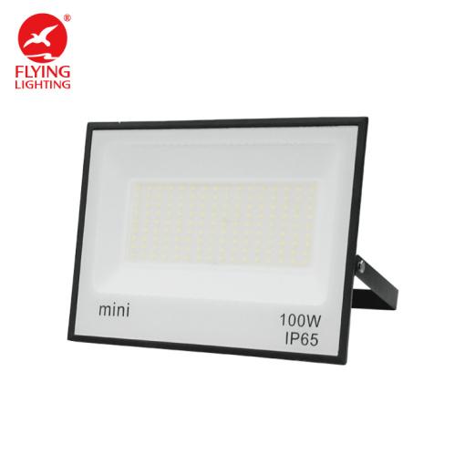 100W Flying Lighting High Efficiency Flood Light