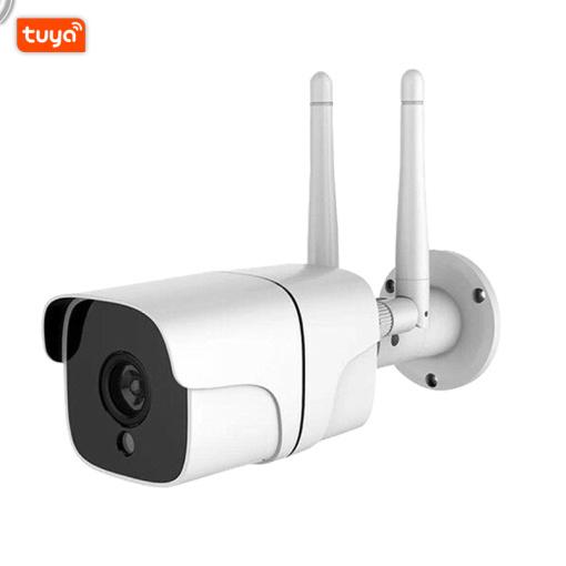 Tuya Smart Life Cloud Wireless Wifi IP Outdoor Camera 2MP Intelligent Auto Tracking Of Human1080P IP66 Waterproof W RJ45