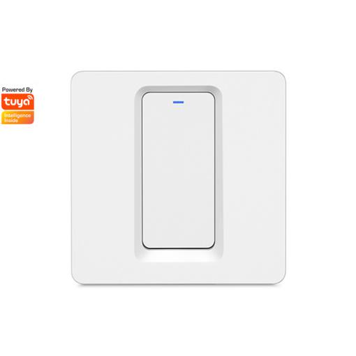 DS-102-1 1gang Light Switch