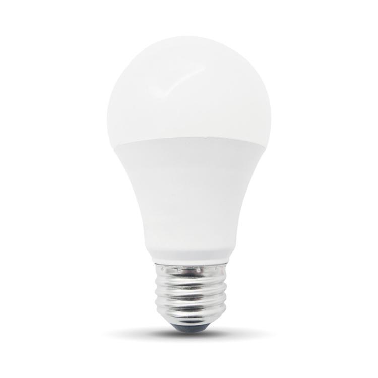 Filament A19 CW Bulb