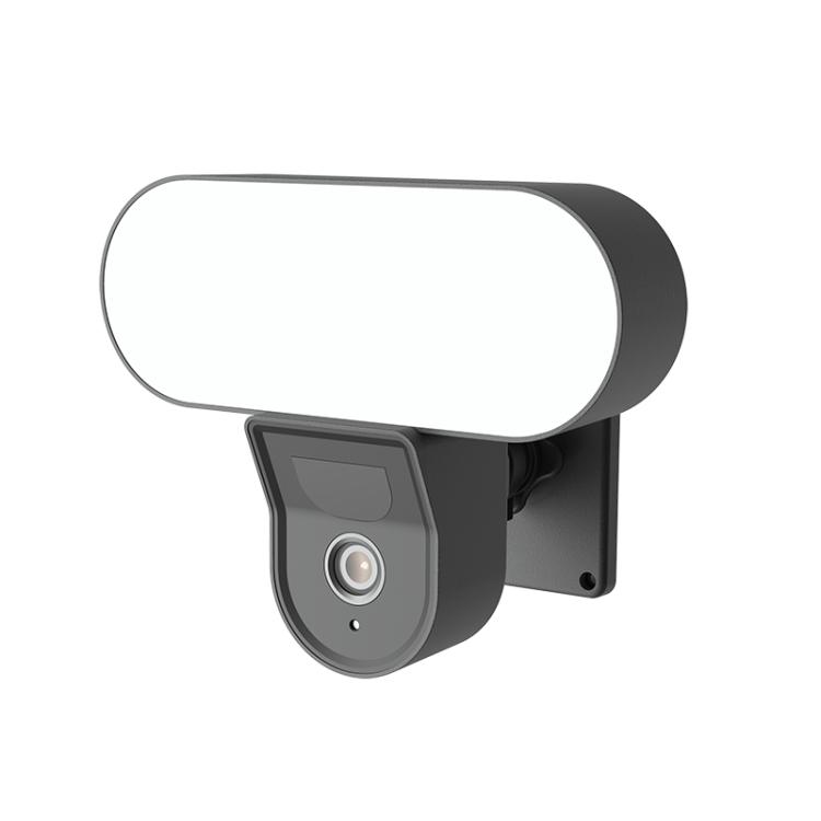 Smart Flood Light Camera