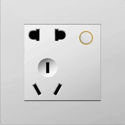 D9S  2 pin & 3 pin universal socket (Zigbee) (with 1-relay)